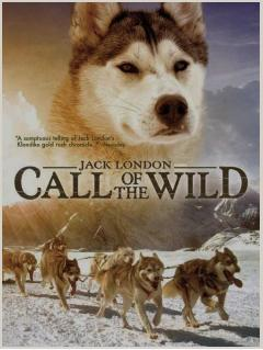 Call of the wild essay