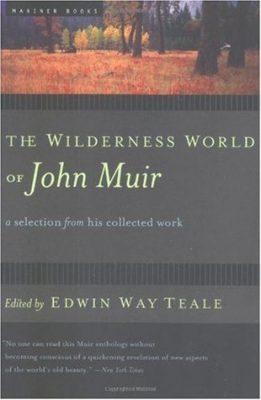 wildernessmuir